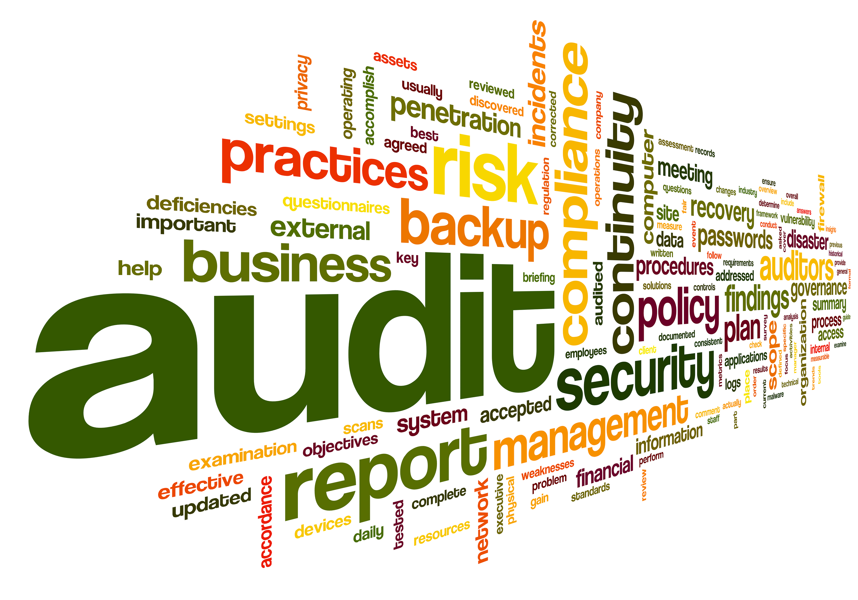 the big 5 audit organizations 125 things to know about the 'big 5' insurers  after a state audit  the portfolio includes accountable care organizations, patient-centered medical homes and other programs for a total of.